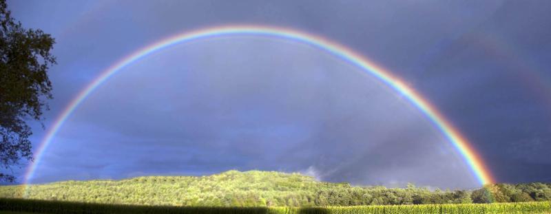 Rainbow 9-6-2014-2